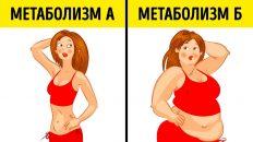 Что такое метаболическая диета